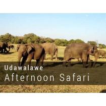 UDAWALAWE NATIONAL PARK afternoon SAFARI GAME DRIVE