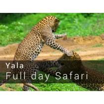 Yala National Park Full day Safari Game drive