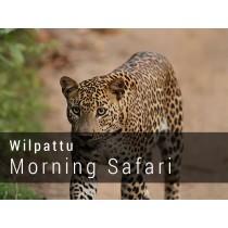 Wilpattu National Park Morning Safari Game drive