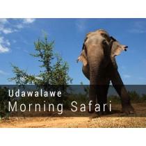 UDAWALAWE NATIONAL PARK MORNING SAFARI GAME DRIVE